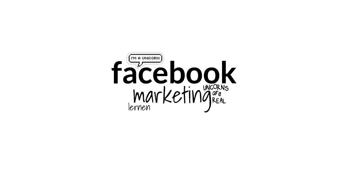 Onlinekurs i marknadsföring på Facebook: snabbkurs i annonser och fans för chefer inom sociala medier